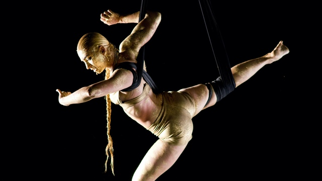 an aerial dancer twisted up in fabric is covered in gold paint