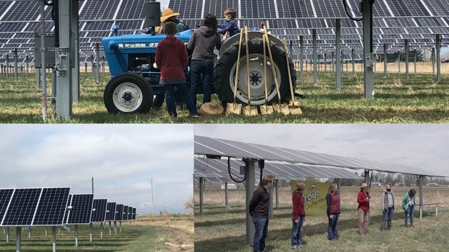 a composite of 3 images with people of all ages at the solar farm
